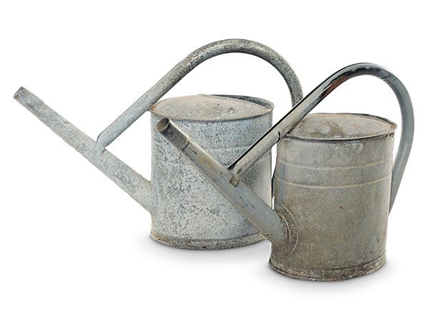 vintage watering cans main