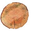 Large Log Slice
