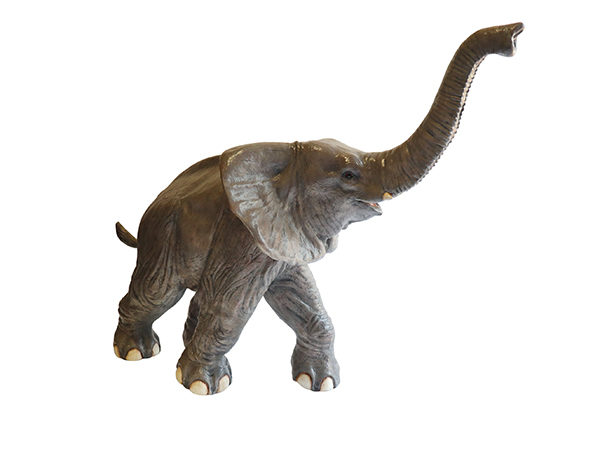 Baby Elephant Prop to hire